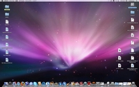Leopard Desktop
